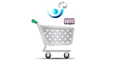Build a Successful Ecommerce Wordpress site with proper SEO